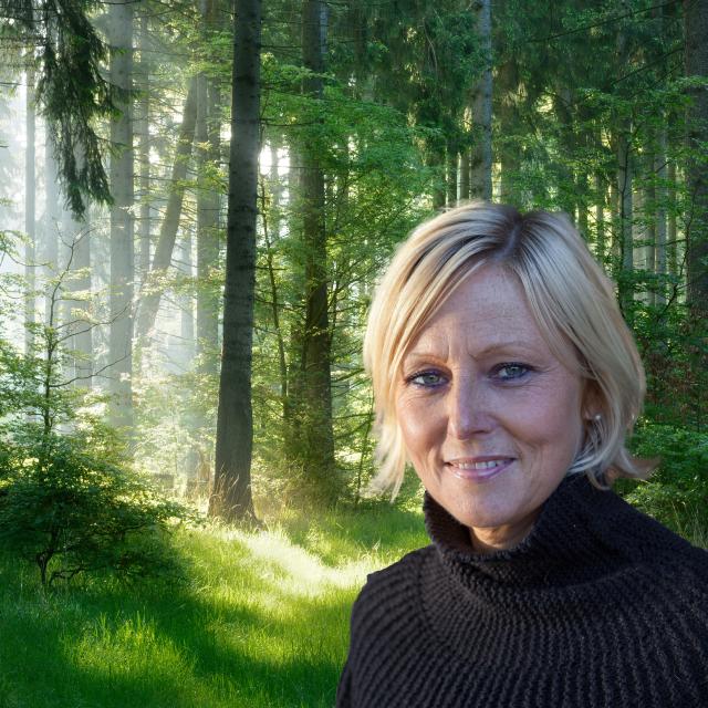 Kvinna mot skog i morgondimma